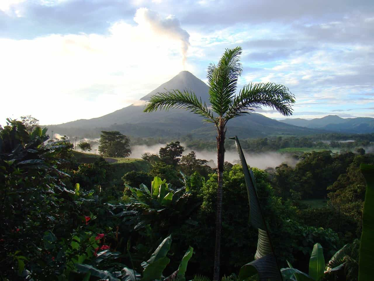 The view of the lush Costa Rican jungle with a volcano in the background.