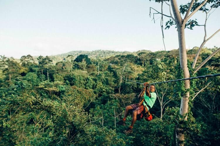 Zipline In Jungle