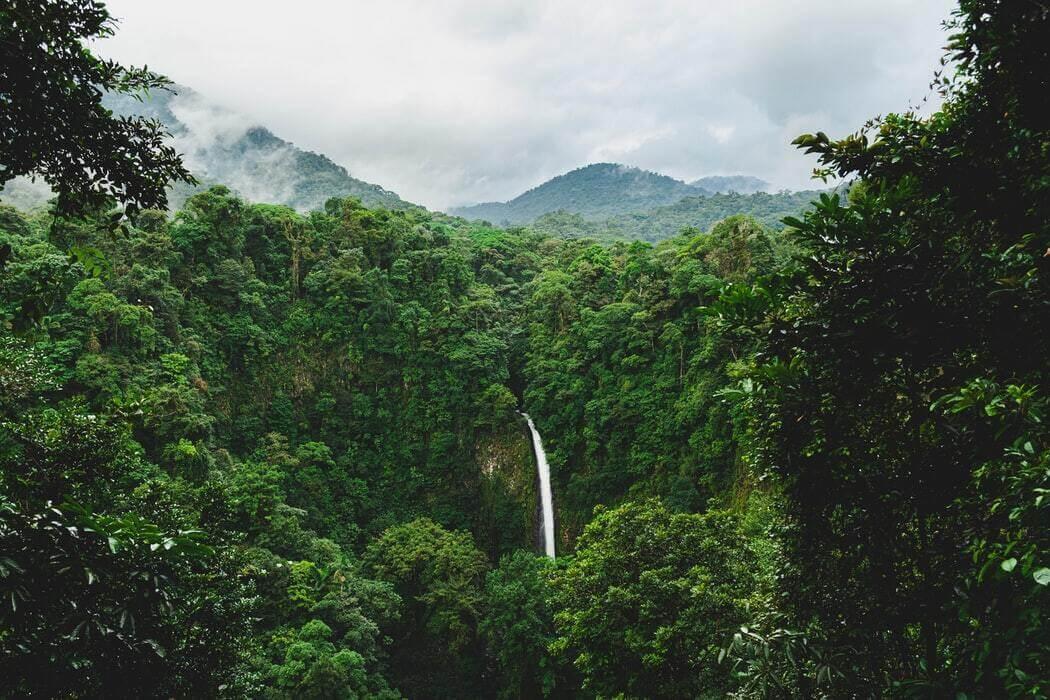 la Fortuna waterfall set in a dense jungle in Alajuela Costa Rica